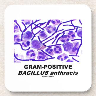グラム陽性の炭疽菌(細菌) コースター
