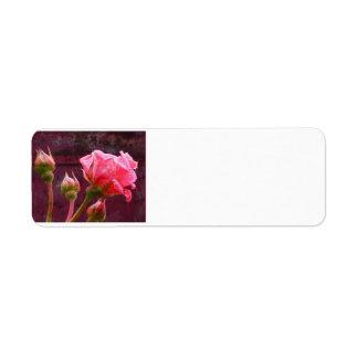 グランジな背景のピンクのバラ及びバラのつぼみ ラベル