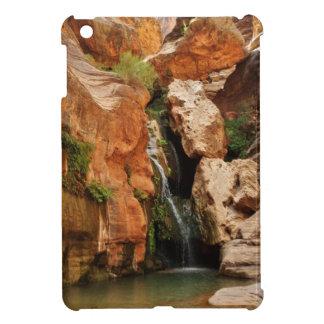 グランドキャニオンの国立公園、アリゾナ iPad MINI CASE