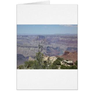 グランドキャニオンアリゾナ カード