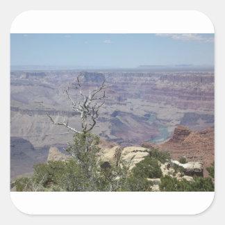 グランドキャニオンアリゾナ スクエアシール
