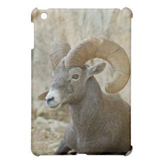 グランドキャニオンNPを休ませる砂漠のオオツノヒツジのラム iPad MINI カバー