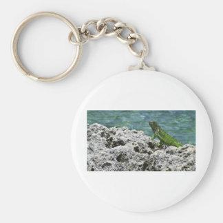 グランドケイマンの島の緑のイグアナ キーホルダー