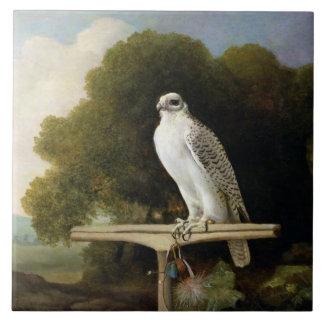 グリーンランドの《鳥》ハヤブサ(灰色の《鳥》ハヤブサ)、1780年(パネルの油 タイル