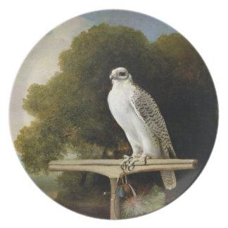 グリーンランドの《鳥》ハヤブサ(灰色の《鳥》ハヤブサ)、1780年(パネルの油 プレート