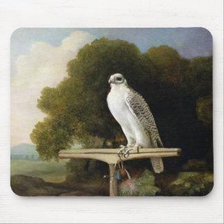 グリーンランドの《鳥》ハヤブサ(灰色の《鳥》ハヤブサ)、1780年(パネルの油 マウスパッド