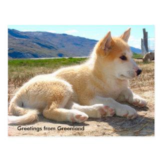 グリーンランド12からの挨拶 ポストカード