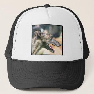 グレイハウンドの帽子 キャップ