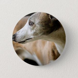 グレイハウンド犬ボタン 5.7CM 丸型バッジ