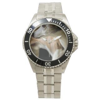 グレイハウンド 腕時計