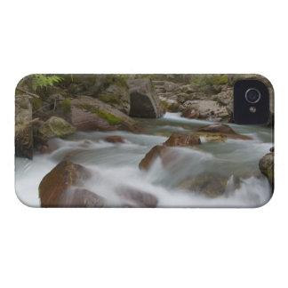グレーシャー国立公園のなだれの入り江 Case-Mate iPhone 4 ケース