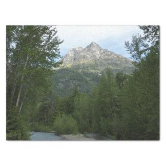 グレーシャー国立公園のマクドナルドの入り江 薄葉紙