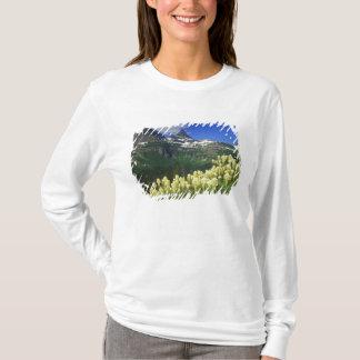 グレーシャー国立公園のローガンのパスのBeargrass Tシャツ