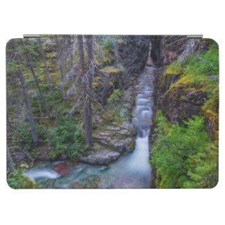 グレーシャー国立公園、モンタナのSunriftの峡谷 iPad Air カバー