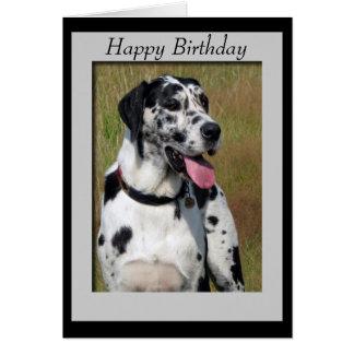 グレートデーン犬の写真のハッピーバースデーカード カード