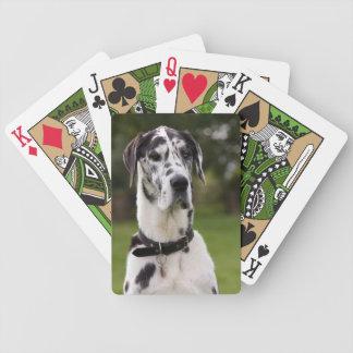 グレートデーン犬の美しい写真のポートレート、ギフト バイスクルトランプ