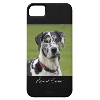 グレートデーン犬の道化師の美しい写真、ギフト iPhone SE/5/5s ケース