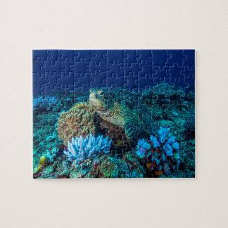 グレート・バリア・リーフのウミガメ ジグソーパズル
