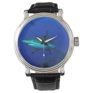 グレート・バリア・リーフの礁の鮫 腕時計