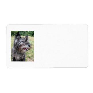 ケアーン・テリア犬の住所シール ラベル
