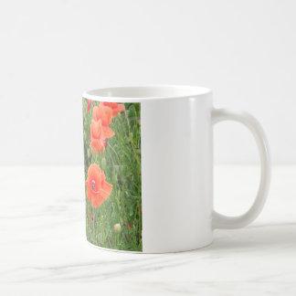 ケシのマグ コーヒーマグカップ