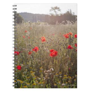 ケシの花の分野 ノートブック