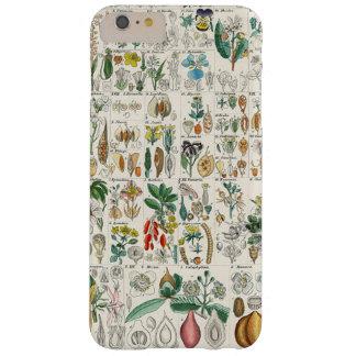 ケシ、すみれ色の植物分類 BARELY THERE iPhone 6 PLUS ケース