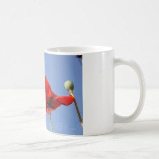 ケシ コーヒーマグカップ