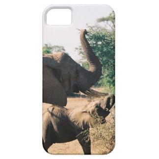 ケニヤのランチタイム iPhone SE/5/5s ケース