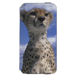 ケニヤ、マサイ族のマラのゲームの予備、クローズアップ INCIPIO WATSON™ iPhone 6 ウォレットケース