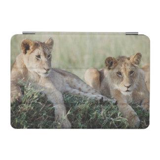 ケニヤ、マサイ語マラのライオンの子のモデル iPad MINIカバー