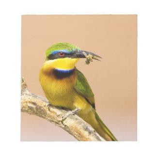 ケニヤ。 肢の小さい蜂食べる人の鳥のクローズアップ ノートパッド
