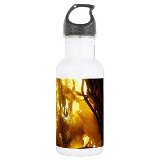 ケルプの影3 ウォーターボトル