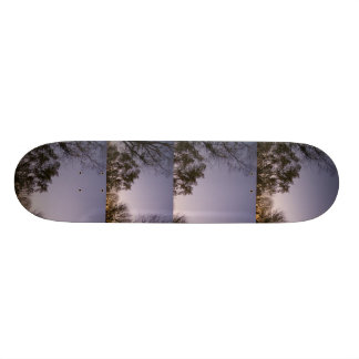 ケンタッキーの日没の景色のスケートボード スケートボード