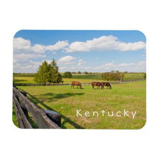 ケンタッキーの馬の馬は写真の磁石を耕作します マグネット