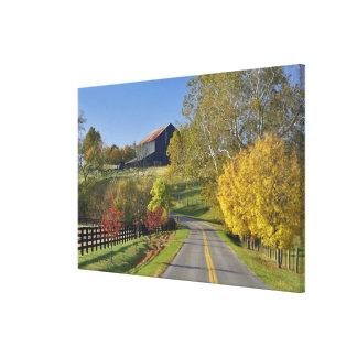 ケンタッキーのBluegrassの地域による田園道 キャンバスプリント