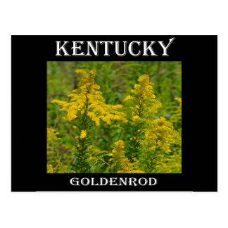 ケンタッキーのGoldenrod ポストカード