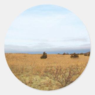 ケープコッドの塩性湿地 ラウンドシール