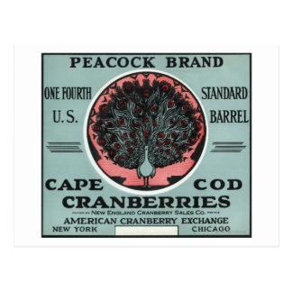 ケープコッドの孔雀のブランドのクランベリーのラベル ポストカード