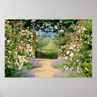 ゲートで制御するべき赤い雑種のバラが並ぶ道Underplanted W ポスター