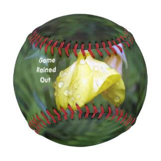 ゲームによっては野球が雨が降りました 野球ボール