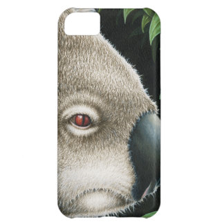 コアラの穹窖の箱 iPhone5Cケース