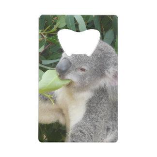 コアラの食べ物のゴムの葉 クレジットカード ボトルオープナー