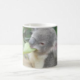 コアラの食べ物のゴムの葉 コーヒーマグカップ