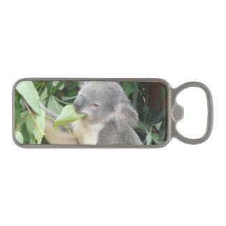 コアラの食べ物のゴムの葉 マグネット栓抜き