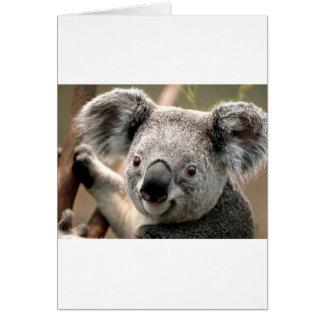 コアラ グリーティングカード