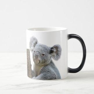 コアラ マジックマグカップ
