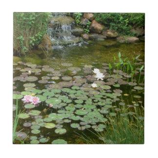 コイの池のタイル タイル