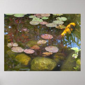 コイの池ポスター ポスター