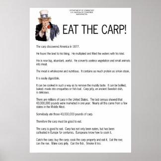 コイを食べて下さい! ポスター